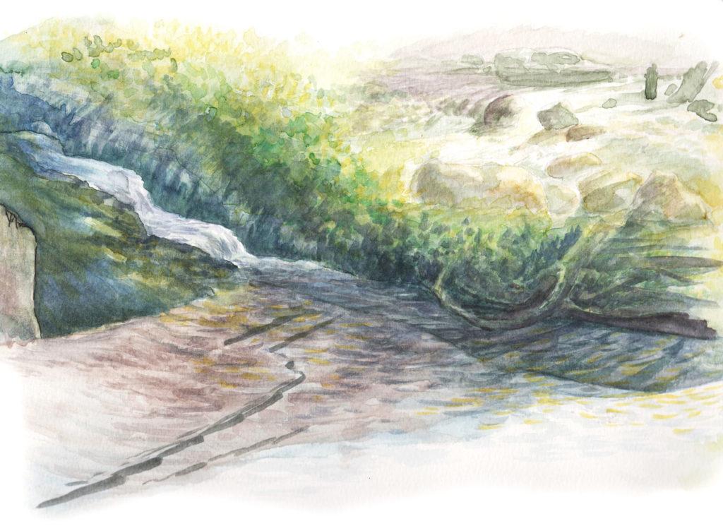 Rivière à Archiane dans le Vercors (aquarelle de Jérémy Zucchi).